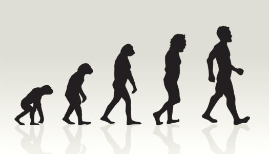 evolution-of-man-illustration-in-silhouette